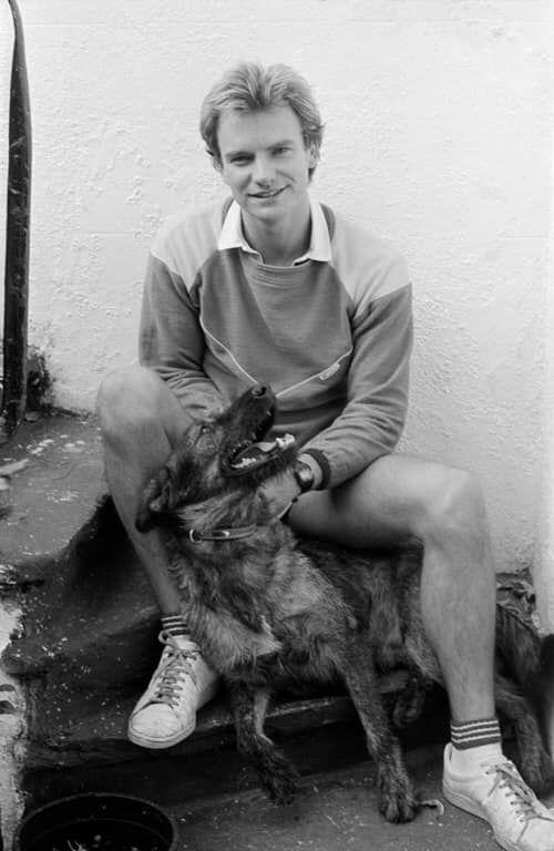 Sting – 19 September 1980 © Craig Betts
